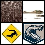 4 bilder 1 wort alligator