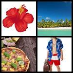 4 bilder 1 wort hawaii